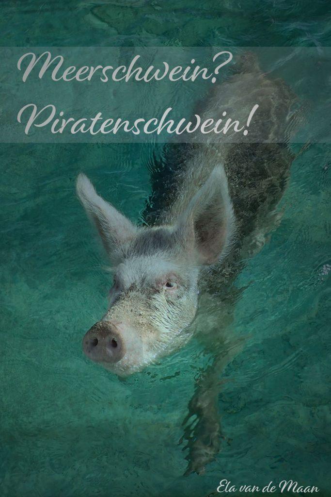 Schweine im Meer?